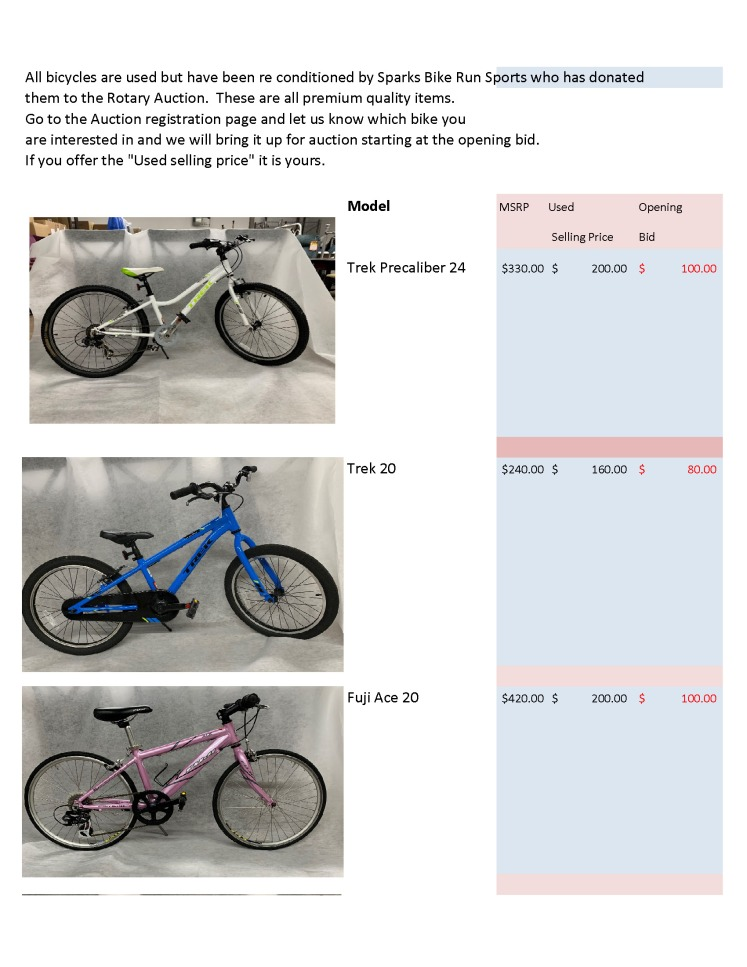 Auctionbike_Page_1