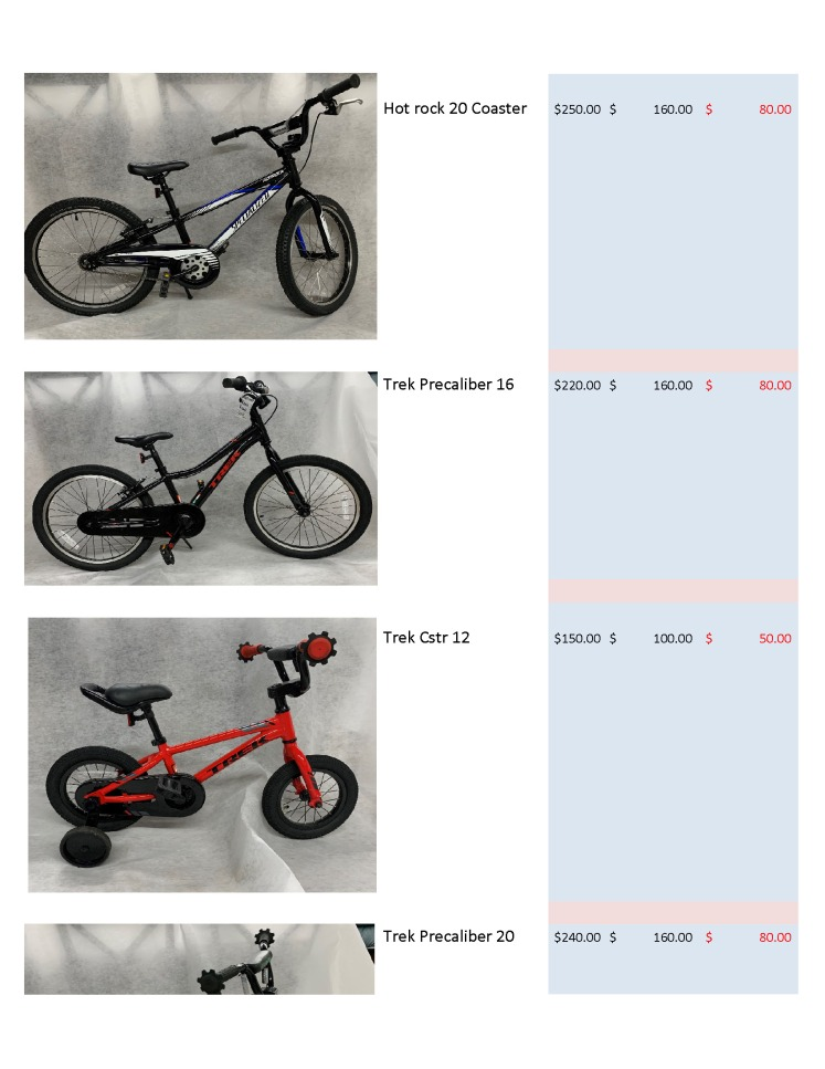 Auctionbike_Page_2