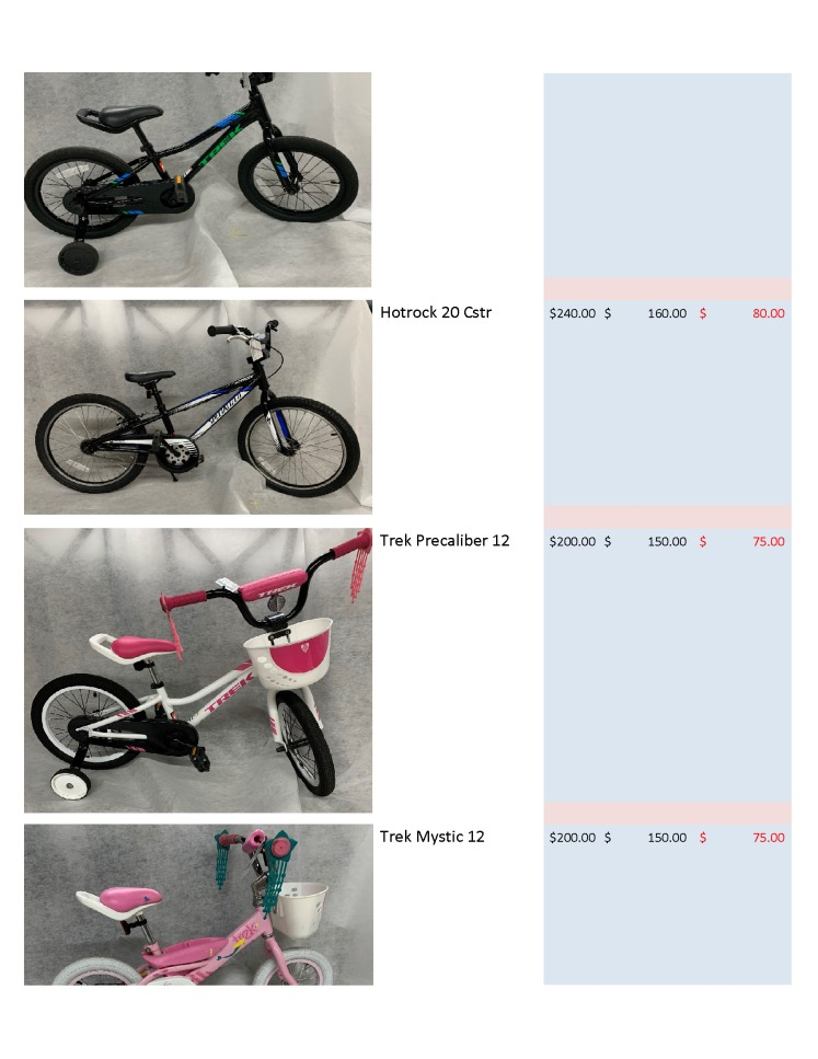 Auctionbike_Page_3