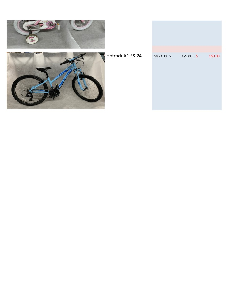 Auctionbike_Page_4